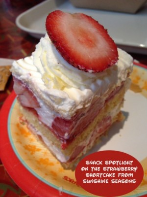 Snack Spotlight on the Strawberry Shortcake from Sunshine Seasons