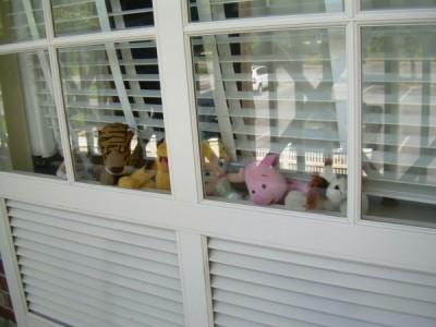 WDW resort window