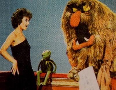 tim muppet top 5-7