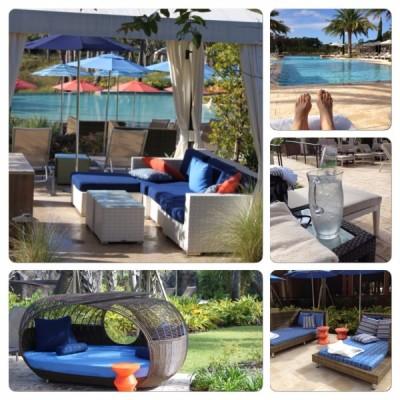 Adult Pool 4 Seasons
