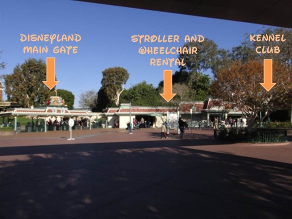Traveling with boots the disneyland resort kennel club for Dog kennels near disney world