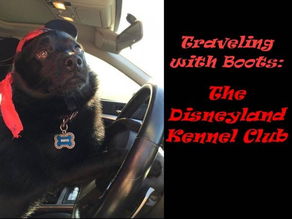 DL Kennel