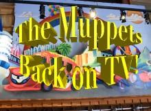 tim muppet tv 2-Edit
