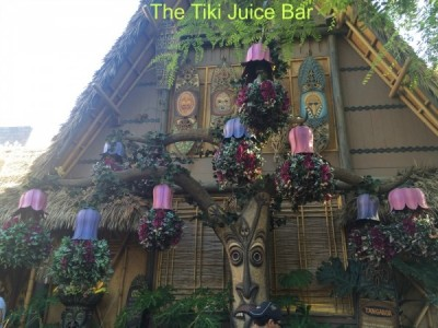 Tiki Juice Bar
