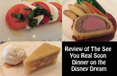 A Review of the See You Real Soon Dinner on the Disney Dream