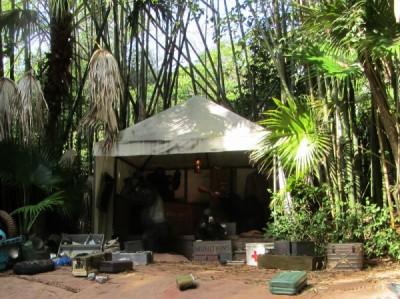 MFL Jungle Camp