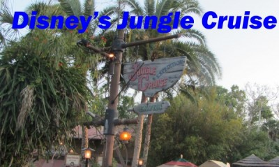 MFL Jungle Main_edited-1