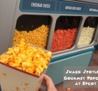 Snack Spotlight on Gourmet Popcorn at Epcot