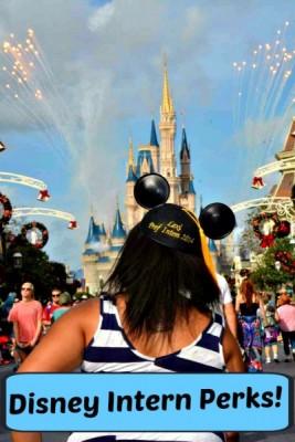 DisneyInternPerks