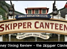 skipper canteen pin