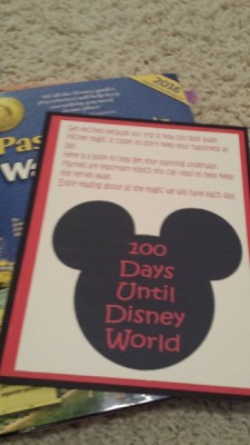 MFL Disney 100 Mom