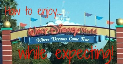 Walt Disney World While Expecting