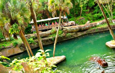 Hippo Lagoon