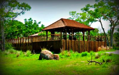 Lunch Pavilion