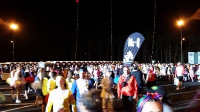 RD Crowd 4