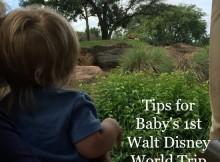 Tips for Baby's 1st Walt Disney World Trip
