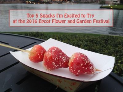 Top 5 Snacks I'm Excited to Try at the 2016 Epcot Flower and Garden Festival