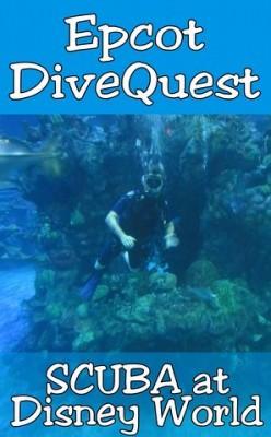 dive1