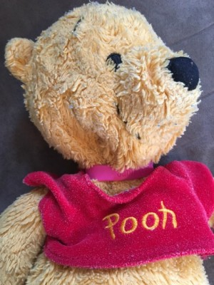 pooh close up