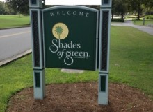The Mysterious Shades of Green