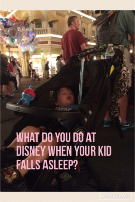 What do you do when your kid falls asleep at Disney?