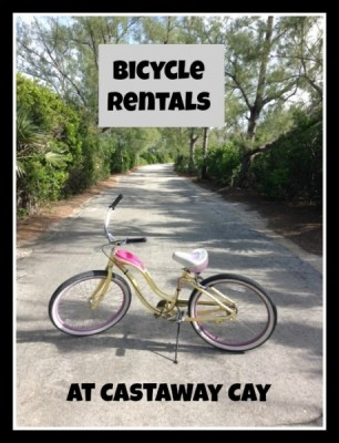 Bike Rental cover