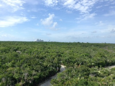 Castaway Cay Lookout Tower 2