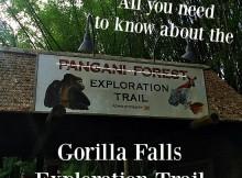 Gorilla Falls Exploration Trail - Entrance