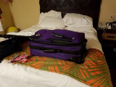 MFL Room Suitcase