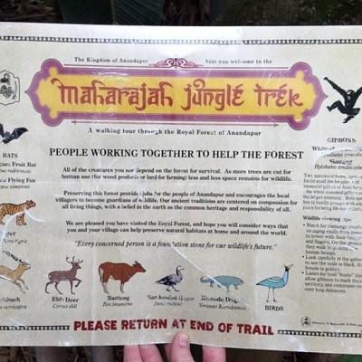 Maharajah Jungle Trek Map 2