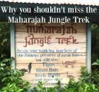 Maharajah Jungle Trek Welcome Sign
