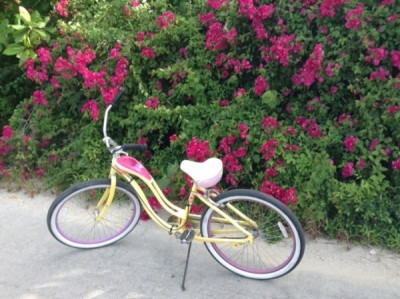 Disney Cruise Line Bike Rentals At Castaway Cay