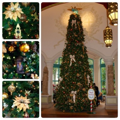Coronado Springs Collage