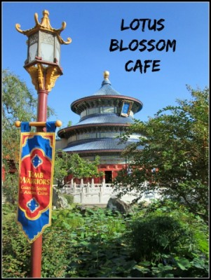 Lotus Blossom Cafe Cover