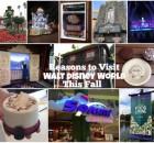 Reasons to Visit Walt Disney World This Fall