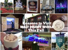 Reasons to Visit Walt Disney World This Fall