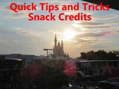Disney Dining Plan Snack Credit Tips
