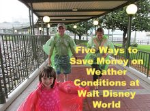 Five Ways to Save Money on Weather Conditions at Walt Disney World