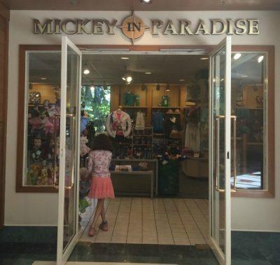 mickeyinparadise
