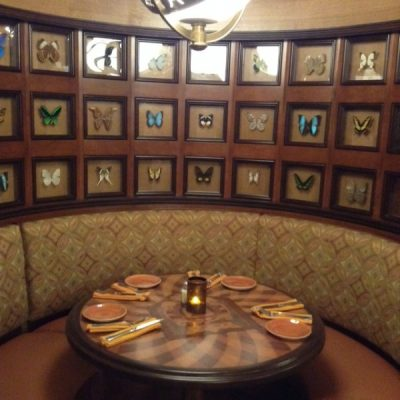 Skipper Canteen Butterfly Booth