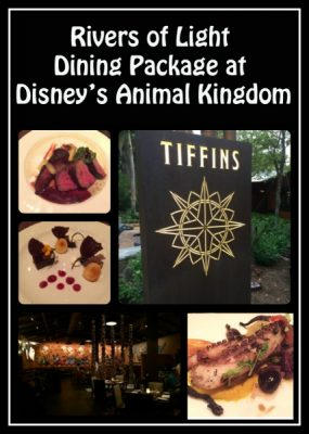 Rivers of Light Dinner Package