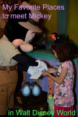 Meet Mickey at Walt Disney World