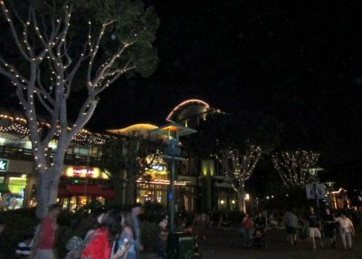 What to do when it's super-busy at Disneyland