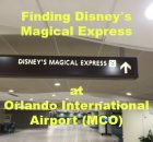 Finding Disney's Magical Express at Orlando International Airport (MCO)