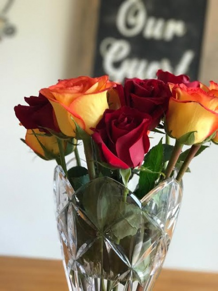 roseshire delivers stunning beauty and the beast inspired roses