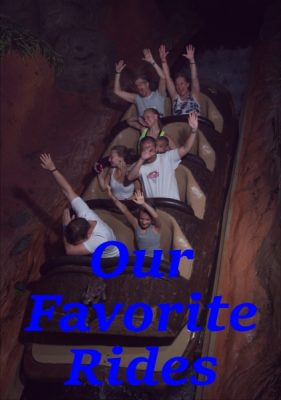 Our Favorite Rides During Our Walt Disney World Vacation