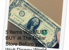 5 Items You Must Buy at The Dollar Store Before your Walt Disney World Vacation