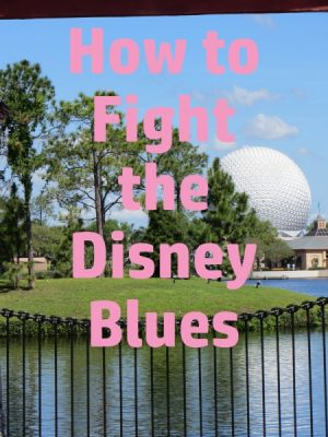 How to Fight the Disney Blues