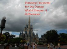 Disney and Universal differences