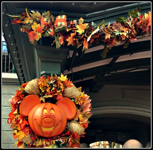 Fall fresh decorations